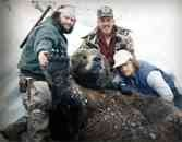 Kodiak Brown Bear Hunting