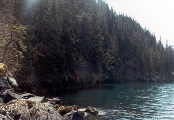 Alaska Real Estate For Sale Cabins Lodges Homes Land