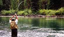 rainbow trout fly fishing in Bristol Bay Alaska